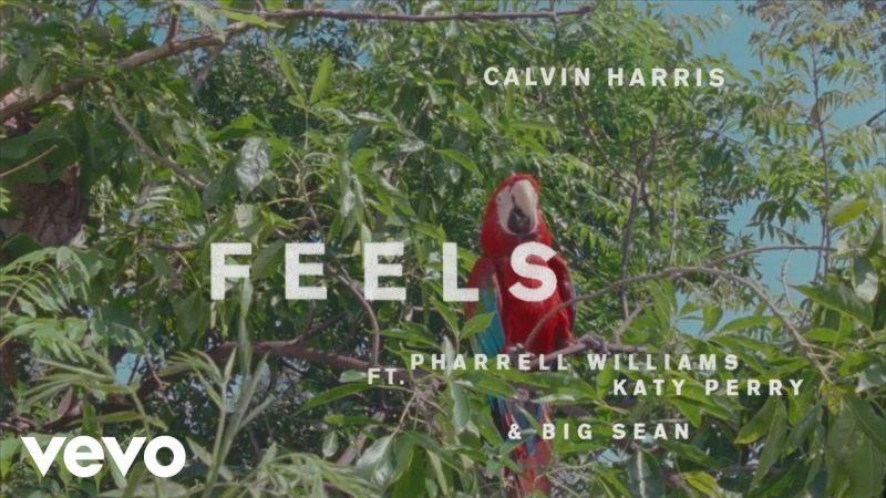 Calvin Harris - Feels feat. Pharrell, Big Sean & Katy Perry (Video)